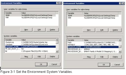 ibm-ds8000-cim-set-the-enviornment-system-variables
