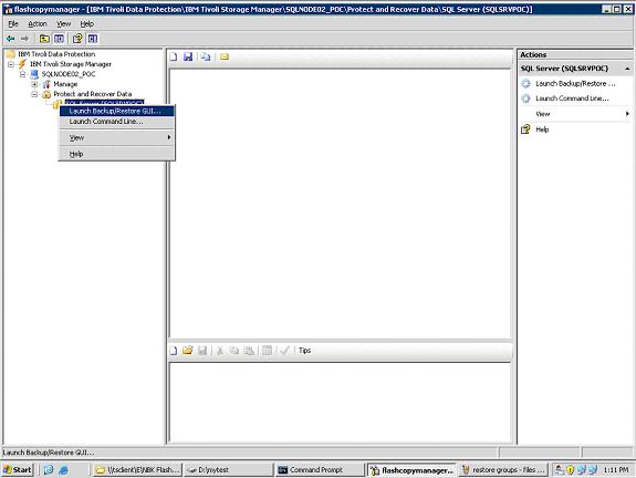 ibm-tivoli-storage-flashcopy-manager-tdp-lunch-backup-restore-gui1