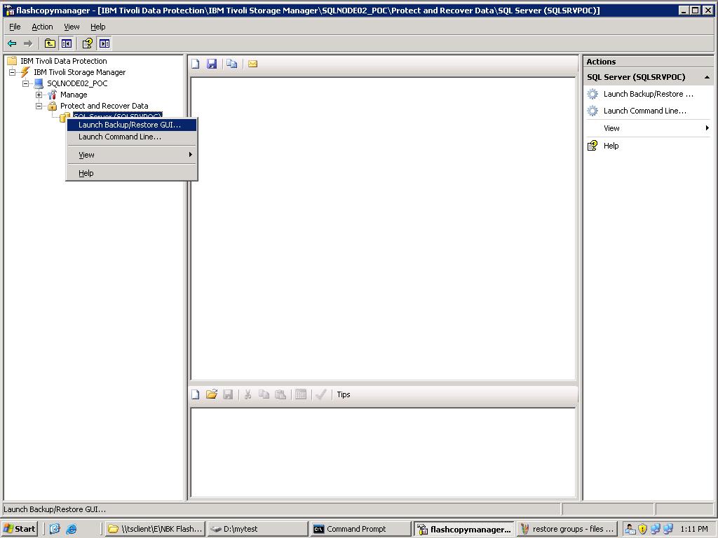 IBM Tivoli Storage FlashCopy Manager Backup & Restore GUI